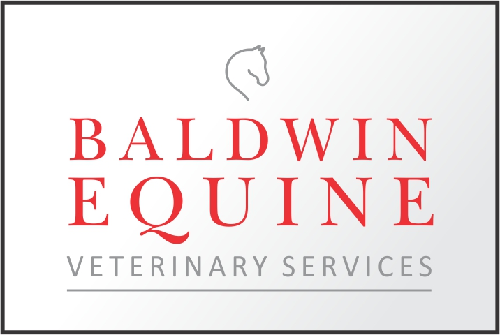 Baldwin Equine Veterinary Services