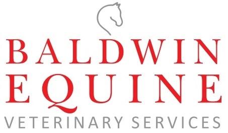 Baldwin equine1