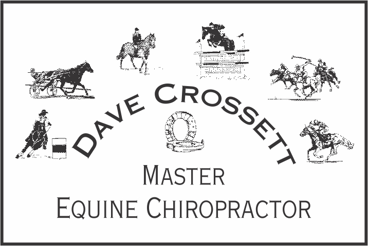Dave Crossett – Master Equine Chiropractor