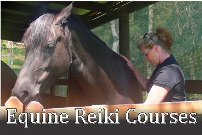 Equine Reiki Courses