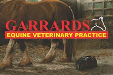 Garrards Equine Veterinary Practice