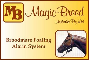 Magic Breed