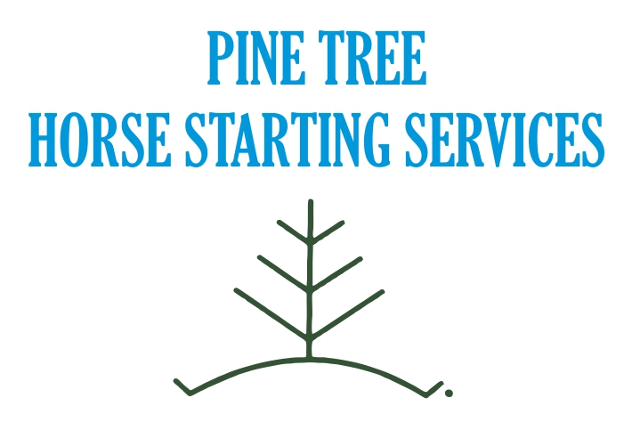 Pine Tree Horse Starting Services