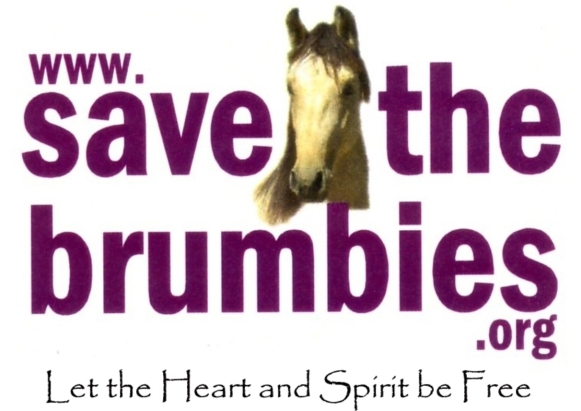 Save the Brumbies Inc