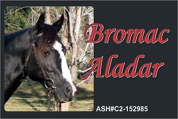 Bromac Aladar