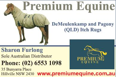 Premium Equine