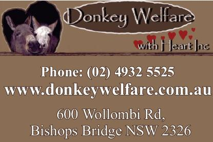 Donkey Welfare With Heart Inc