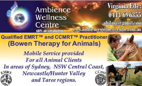 Ambience  Wellness  Centre