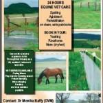 Freestone Equine Vet Farm