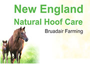 New  England  Natural  Hoof  Care