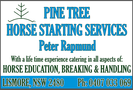 Pine tree map