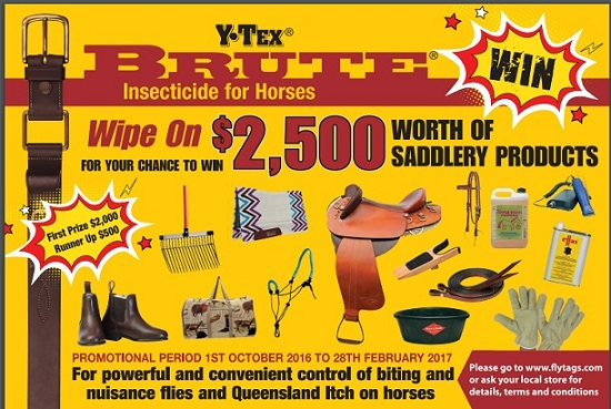 Brute Insecticide For Horses Equinenews Com Au